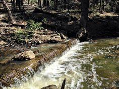 Horton Creek Trail in Payson