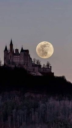 Here come the werewolves! Beautiful Moon, Beautiful Castles, Beautiful Places, Fantasy World, Dark Fantasy, Akali League Of Legends, Dark Castle, Slytherin Aesthetic, Aesthetic Wallpapers