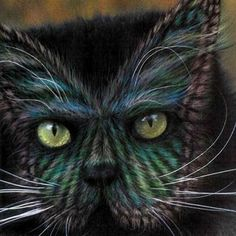 Painted cats: Some of the paint jobs cost $15,000 and had to be repeated every 3 months as the cat's hair grows out.   Must be nice to have $60,000 a year just to keep your cat  painted!!