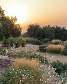 Gravel Path, Gravel Garden, Garden Landscaping, Small Courtyard Gardens, Small Courtyards, Diy Garden, Dream Garden, Turin, Atrium
