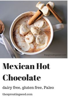 Mexican Hot Chocolate (Dairy Free, Gluten Free, Grain Free, & Paleo) - The Sprouting Seed