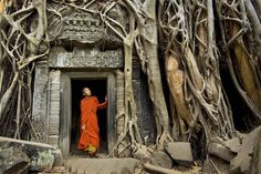 Photo by @alisonwrightphoto // Monk at Ta Prohm Temple Angkor Cambodia. Cambodia has the greatest proportion of amputees in the world due to the presence of millions of land mines which impose a heavy economic and social burden on this country already one of the poorest nations in the world. With an estimate placing the cost of clearing a single mine at $300 to $1000 more than 5000 mines have been collected and destroyed since Cambodia signed the Mine Ban Treaty in 1997 hoping to bring it…