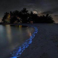 Super Maldives vacation 12 best places to visit . - Super Maldives Vacation 12 Best Places To Visit …, # - Maldives Vacation, Maldives Beach, Visit Maldives, Maldives Sea Of Stars, Maldives Resort, Maldives Hotels, Maldives Islands, The Maldives, Playa Beach