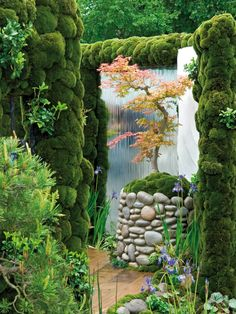 Miniature Mountain Landscape in Asian Garden  A miniature mountain landscape with lush greenery and a waterfall is recreated in this Asian garden. A Japanese maple tree adds color among the greenery.