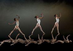 Aria - Eco e Narciso NoGravity Dance Company