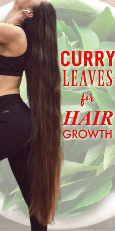 4 Ways To Use Curry Leaves For Hair Growth And Premature Hair Greying - Frauen Haar Modelle Hair Mask For Growth, Hair Growth Tips, Hair Care Tips, Hair Tips, Grey Hair Remedies, Hair Care Recipes, Hair Tonic, Hair Issues, Extreme Hair