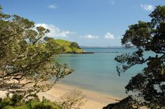 Coopers Beach, Northland, New Zealand New Zealand, Coast, River, Beach, Outdoor, Outdoors, The Beach, Beaches, Outdoor Games