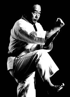 Sasae uke Martial Arts, Fictional Characters, Combat Sport, Fantasy Characters, Martial Art
