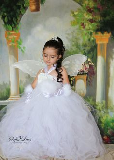 angel fairy princess costume. Emily would solo love this!!!!!