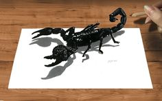 3D Pencil Drawing: Emperor Scorpion How to Draw Animals - Speed Draw | J...