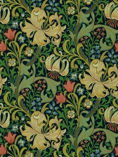 Buy Pale Biscuit, Morris & Co. Golden Lily Wallpaper from our Wallpaper range at John Lewis & Partners. John Lewis Wallpaper, William Morris Wallpaper, Morris Wallpapers, Lily Wallpaper, Home Wallpaper, Vinales, Motif Floral, Floral Prints, Art Prints