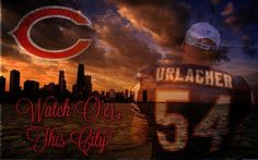 urlacher we miss u
