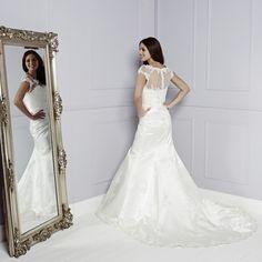 Back of Amari Wedding Dress - Amanda Wyatt Blue Iris 2015 Bridal Collection