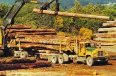logging+in+1970 | Weyerhaeuser Company Logging Operations - Page 7