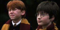 This Tragic 'Harry Potter' Theory About Hedwig Will Blow Your Mind