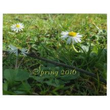 #Spring 2016, #Daisy Flowers #Puzzle