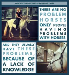 Do you have a problem horse or a problem with your horse?