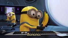 La chose inespérée...! Une banane allô quoi?!