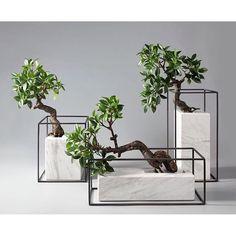 simply form, iron and stone. and bonsai :-) - simply form, iron and stone. and bonsai :-] Imágenes efectivas que le proporcionamos sobre diy hom - Beton Design, Concrete Design, Interior Plants, Interior Design, Luxury Interior, Luxury Decor, Indoor Plants, Planting Flowers, Planting Plants