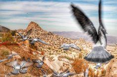 Şİmdi Kapadokya Zamanı Her Cuma Hareketle Kapadokya'nın Gizemli Havasını Solumaya Gitmek İster misiniz? Detaylı Bilgi ve Rezervasyon İçin 444 33 98 http://www.kapadokyaturlari.com.tr/kapadokya-turu-cuma-1-g…/ #kapadokyaturlari #otobüslükapadokyaturlari #ucaklıkapadokyaturu #kapadokya #tatilhome