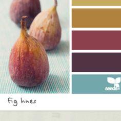 Fig color hues