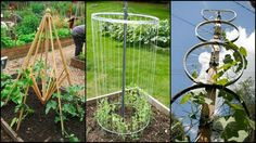 An album of creative trellises made from various recycled materials.