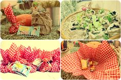 My projects - farm party gifts