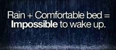Rain + Comfortable Bed = Impossible to wake up!