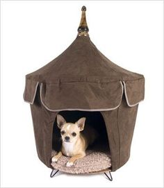 Your small dog is sure to feel like royalty in these cozy, private Pet Tent…