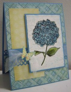 Because I Care stamp set. handmade card from Stamping with Loll: Blue Hydrangea . lovely blue, white and yellow color combo . Stampin' Up! Scrapbook Paper Crafts, Scrapbook Cards, Scrapbooking, Blue Hydrangea, Hydrangeas, Baby Kind, Sympathy Cards, Greeting Cards, Pretty Cards