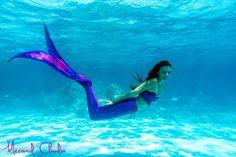 Mermaid Claudia swimming in the sea Whale, Mermaid, Swimming, Sea, Outdoor Decor, Animals, Swim, Animales, Whales
