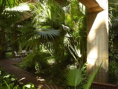 Assamite Compound - Exterior Gardens and Courtyard