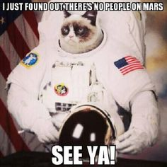 Grumpy found no people on Mars #GrumpyCat