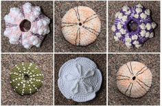 sea-urchin-crochet-pattern.  Love the sand dollar!