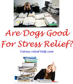 stressreliefoven dog stress relief plug in - eucalyptus stress relief hair benefits. stressreliefbath rescue stress relief gum stress relief meditation method goal setting for stress relief 15219