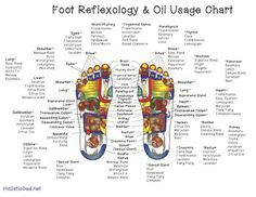 Reflexology Chart and Oil Use~ Chart showing how and where (and which oils) can be used to effect different body systems using reflexology on the feet. Reflexology can also be used on the hands or ears, and remember, essential oils can also be applied directly to the area of concern (i.e. on the stomach for a stomach ache.)