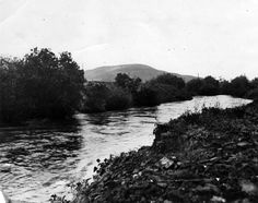 The Lost Wetlands of Los Angeles | LA as Subject | SoCal Focus | KCET