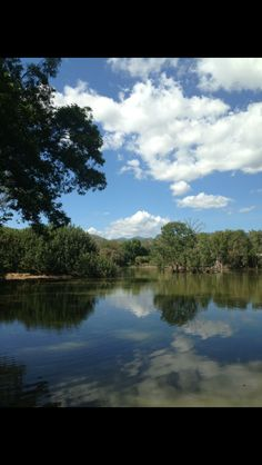 Billabong Sanctuary - Townsville #australia