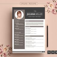 Sample Resume Free Download Professional In Word Format Templates 2003
