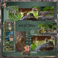 For the September Bluebird Mix & Match challenge https://forum.scrapbird.com/viewtopic.php?f=234&p=88106&sid=baadf77d8ad076cdeab5d7235fe34b59#p88106  Getting Squirrely by Dae Designs  Mini Kit School Memories by Kittyscrap  Dino My Friend by LeaUgoScrap  Must Be Fall by Elizabeth's Market Cross  Also used are Meryl Bartho's Layer Upon Layer For Eleven template   and word art by Tina Chambe