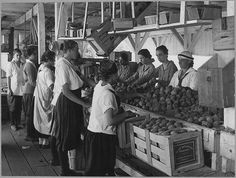 World War I Farmerettes Pack Peaches on a Virginia Fruit Farm in August, 1917 by The U.S. National Archives, via Flickr