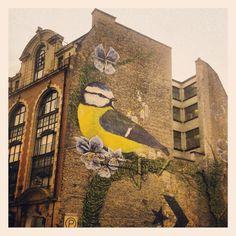 Beautiful bird in Manchester