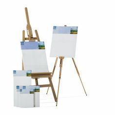 Artist's Loft™ Back Stapled Canvases - I'd like to get canvas and acrylics and an easel.