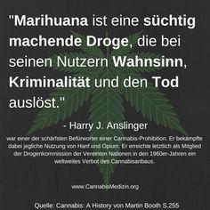 Die alte Propaganda die dafür geführt hat, dass Cannabis schlussendlich verboten wurde. Leider haben sich diese falschen Behauptungen bis heute gehalten und wir müssen dafür sorgen, dass die Menschen endlich ehrlich aufgeklärt werden.