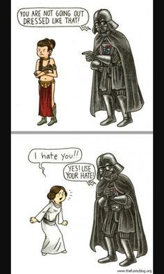 I have this book, it's called Vader's Little Princess and it's great