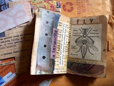 Fly (Mini Book making) by LaWendula, via Flickr