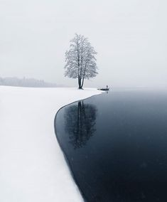 Tranquillity of nature. The first snow and a lonely tree in Järvenpää, Finland. Landscape Photography, Nature Photography, Photography Meme, Travel Photography, Photography Hashtags, Landscaping Images, Winter Scenery, Winter Landscape, Beautiful Landscapes