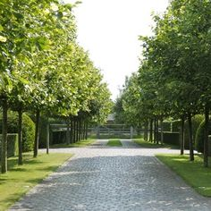 Landelijke tuin met integratie van een zwembad en weides. - Vereecke Lieven