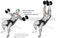Best chest exercises for lower and upper chest | Weight Training Guide Fitness Workouts, Great Ab Workouts, Fitness Gym, Corps Fitness, Training Workouts, Fitness Equipment, Best Chest Workout, Chest Workouts, Chest Exercises
