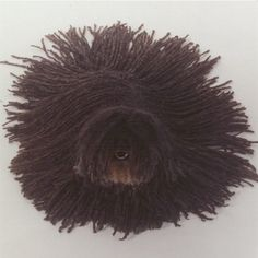 This Puli is basically modern art.